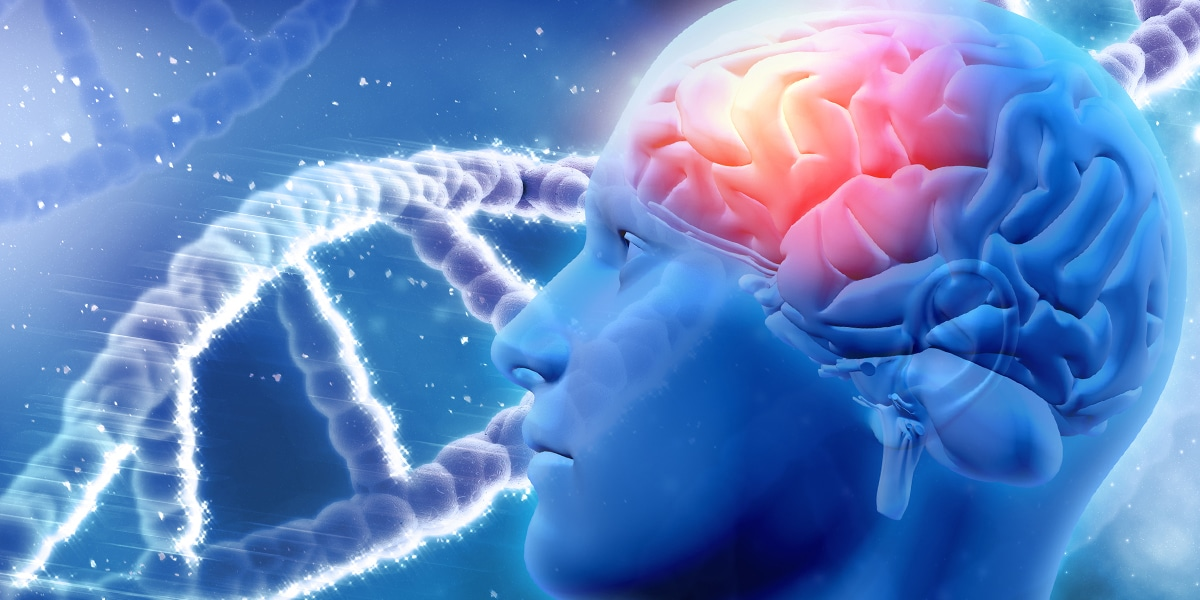 Neurocognitive Function